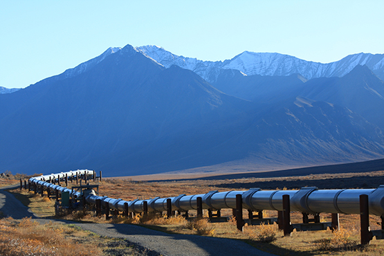 Stock Image Trans-Alaskan Oil Pipeline